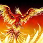 22-phoenix.jpg